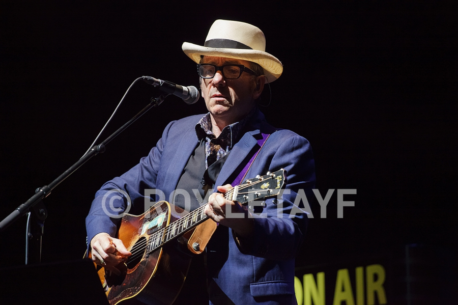 Elvis-Costello_7343