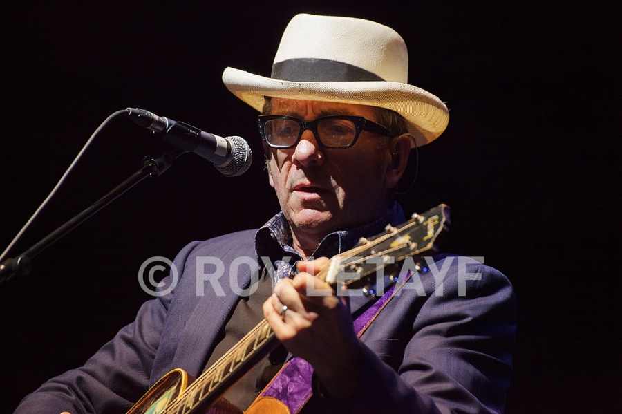 Elvis-Costello_7363